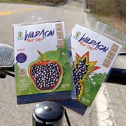 Appearance on ABC's 'Shark Tank' Yields National Attention for Akron-Made Peaceful Fruits