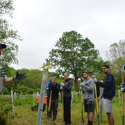Clean Up The Outside World: Volunteers Plant Trees in the Cuyahoga River Valley, And You Can Too