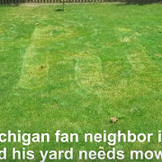 Buckeye Fan Mows 'OHIO' Into His Michigan Fan Neighbor's Grass