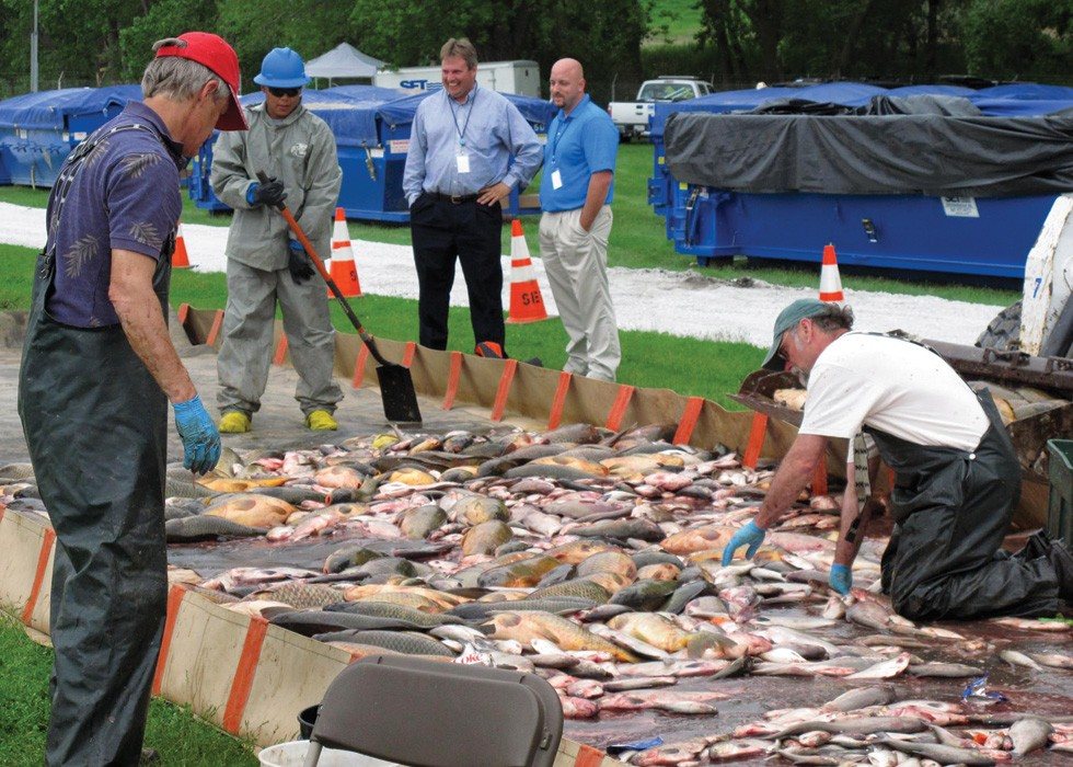 Fish-sorting and disposal operations after rotenone poisoning in May, 2010. - PHOTO BY LT. DAVID FRENCH./U.S. COAST GUARD