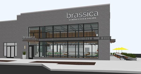 eat1-3-brassica-renderingbyrms.jpg