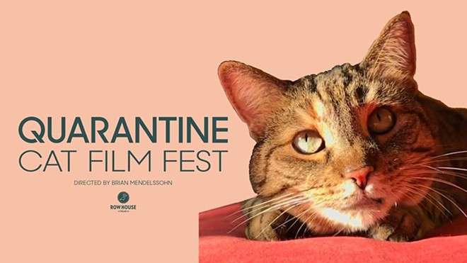 COURTESY QUARANTINE CAT FILM FEST