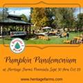 Pumpkin Pandemonium at Heritage Farms