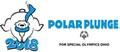Cleveland Polar Plunge