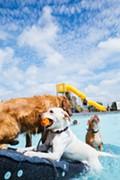 Dog Paddle & Pet-a-Palooza