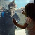 International Women's Dive Day
