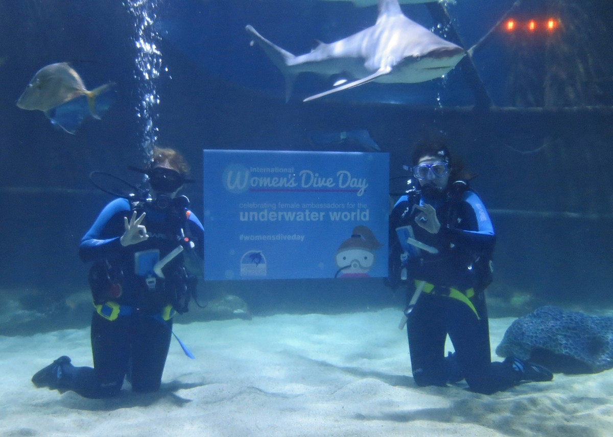 International Women's Dive Day returns to the Greater Cleveland Aquarium. See: Saturday.