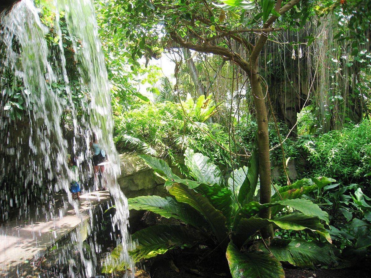 1200px-cleveland_botanical_garden_-_interior_2.jpg