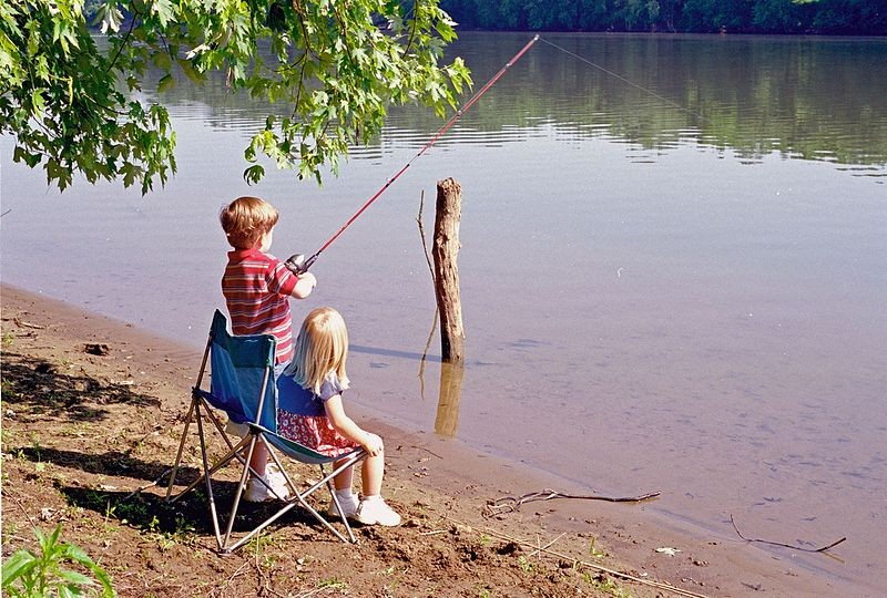 Here 39 s how you can fish for free this weekend in ohio for Odnr fishing license