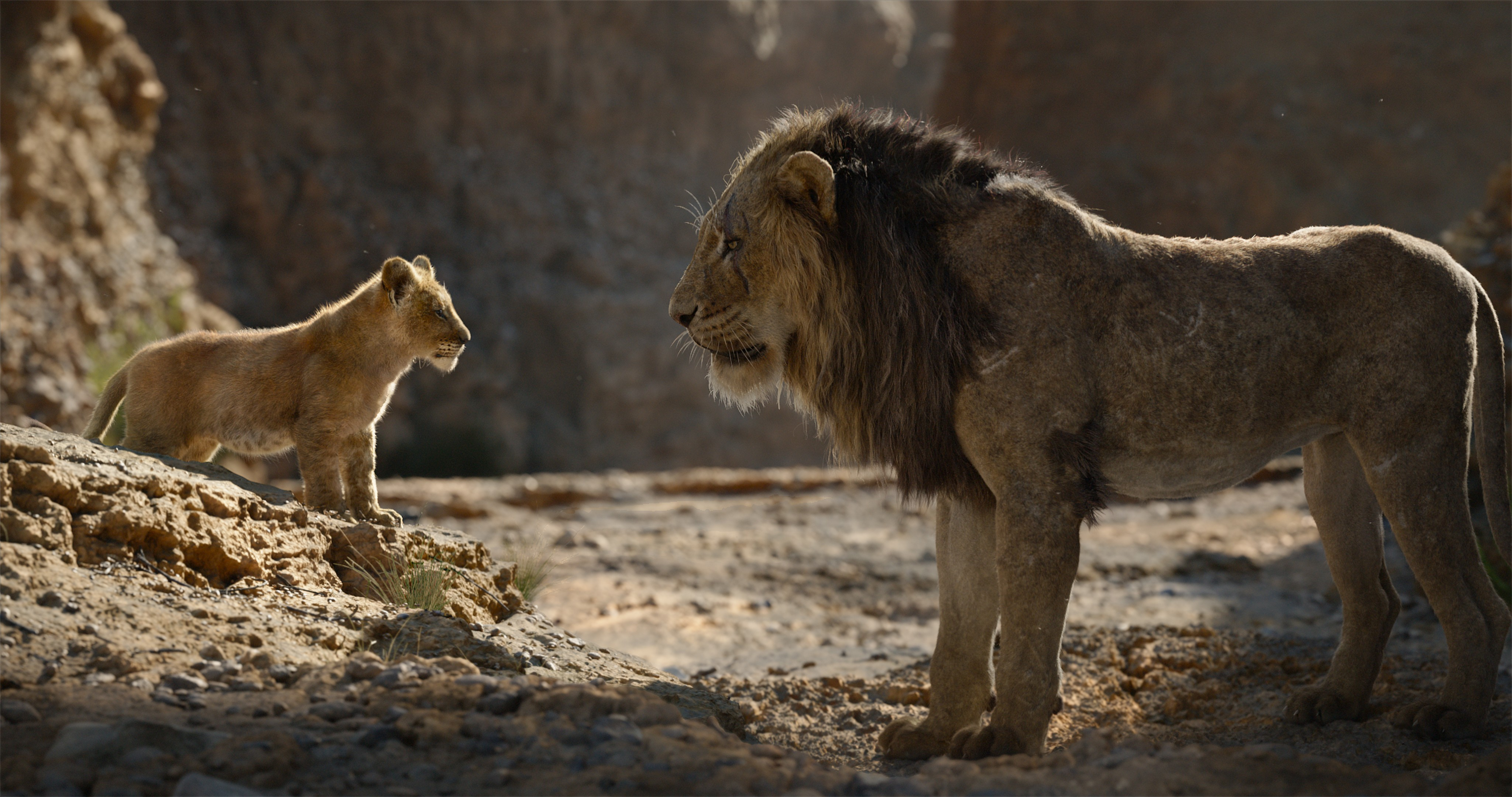 Lion King Harshest Reviews