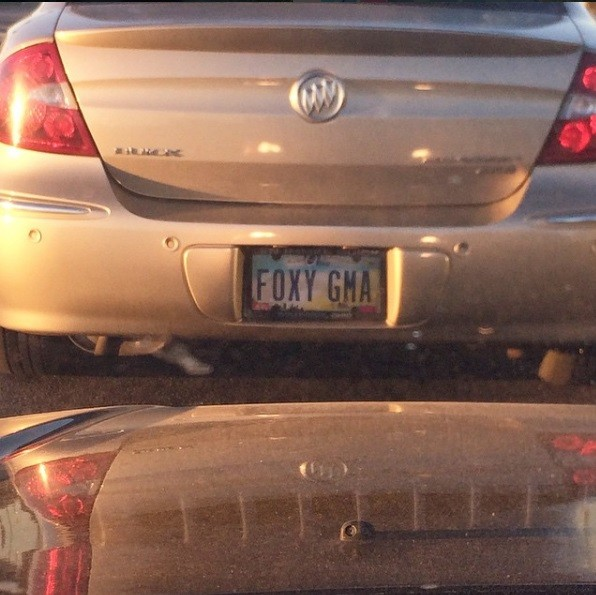 All The Vulgar Stupid And Otherwise Offensive Vanity Plates The