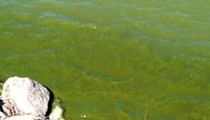 Two Kinds of Algal Blooms Already Detected on Lake Erie, Expected to Worsen