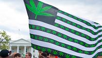 U.S. House Makes Historic Vote to Decriminalize Marijuana