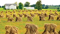 Places to Go and Things to See On an Amish Country Road Trip