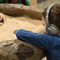 Cleveland Museum of Natural History Hosting 'Sensory Friendly Sunday' For Patrons on the Autism Spectrum