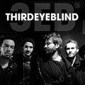 Alt-rockers Third Eye Blind Anger RNC Guests at Rock Hall Performance