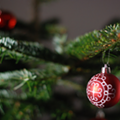 Why We Decorate for the Holidays and Fight the Dark