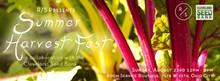 44a2b257_harvest_fest_fb_banner.jpg