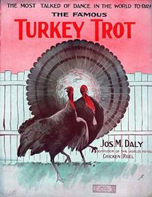 94161da2_turkey-trot.jpg