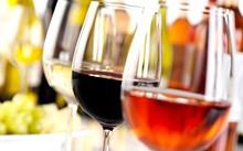 cefd279e_1695573135-wine-tasting.jpg