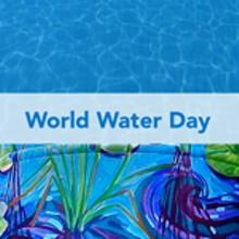 64601cd1_worldwaterday-150x150_1_.jpg
