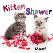 66660692_kitten_shower.png