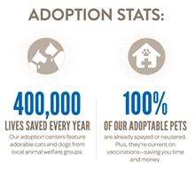 cef81eba_pci-adoption-stats-2013.png
