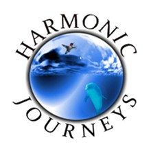 dd0e48d0_harmonic-journeys-square_copy.jpg