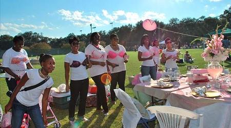 picnic-in-park-pink-girls-in-park.jpg