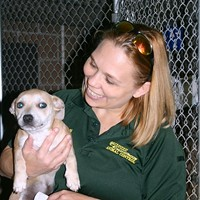 Shelter animals transported to ATL