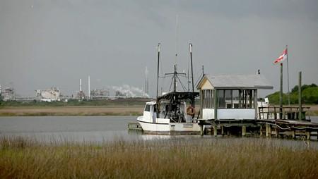 Chris Hannat's short film, Before Too Long, examines the deteriorating ecological status of the Savannah River.