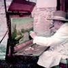 Churchill: Politician and Painter