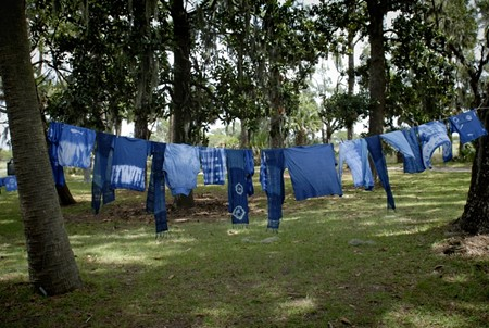 Fifty shades of blue: The dye from Ossabaw Island's heritage indigo plants yields a 'bright and vibrant' shade that's different from other types. - HEATHER K. POWERS