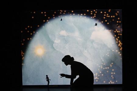 Matreyek's silhouette adds a human touch to her high-tech process.