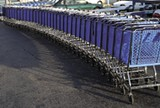 shopping-carts.jpg