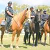 More horse cops!