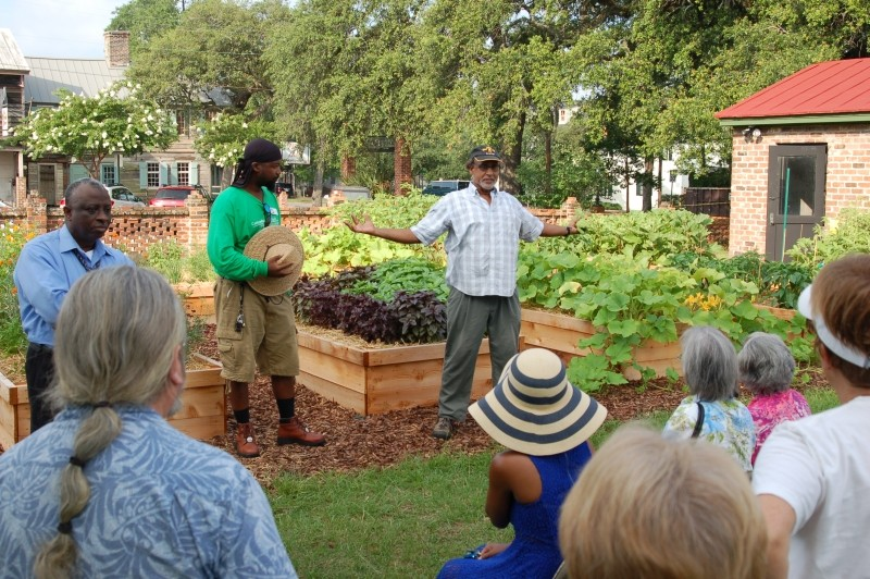 The Canyon Ranch Institute Healthy Garden at Trustees' Garden is a hands-on experience for experienced and novice gardeners. Growing vegetables and herbs, sharing the produce, and making new friends promote health literacy in the community.