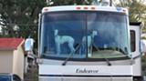 dogshow-031-12.jpg