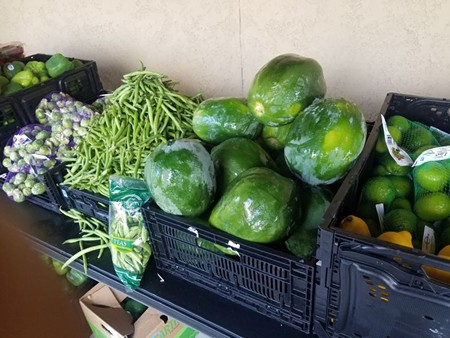 Produce from a Chatham County food pantry.