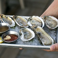 Coyote Oyster Bar: Fresh and flavorful