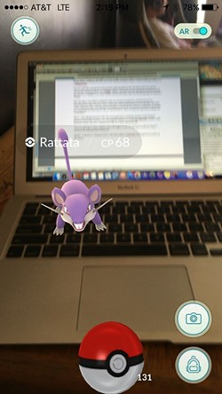 A wild Rattata appeared during the writing of this column!