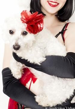 The Ho Ho Holiday show benefits The Humane Society of Savannah. - LAVENDER HAZE