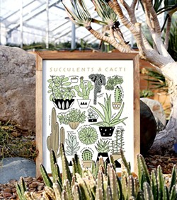 kristen_drozdowski-succulents_and_cacti_styled.jpg