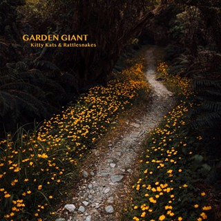 Rock N' Roll: a conversation with Garden Giant's Devin Smith