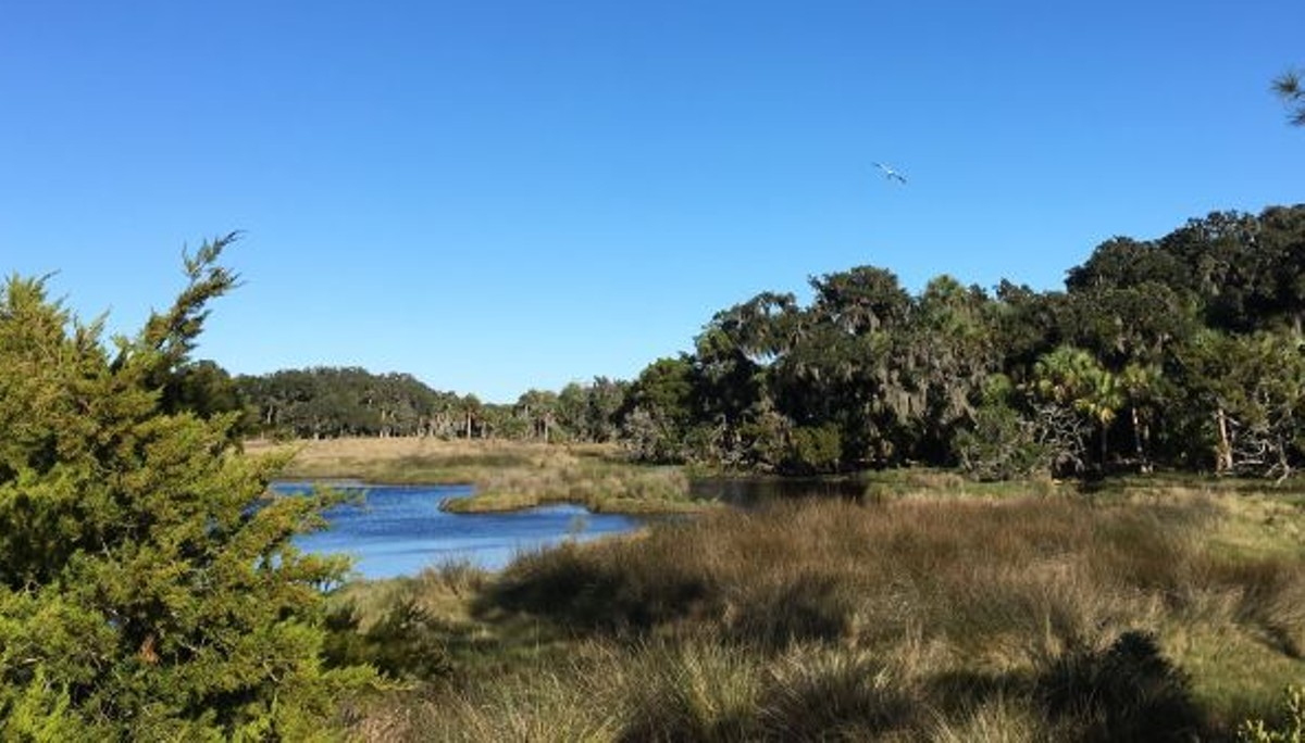 Ossabaw Island's annual meeting recognizes Coastal Marshlands Protection Act
