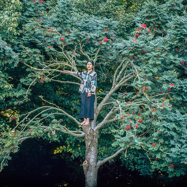 "Ingrid Pumayalla's ""Exercise to Climb a Tree,"" from her ""Nuna"" series."