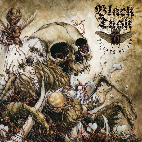 black1-3-f6c343dd393efc9a.jpg