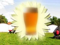 Summer Beer Roundup!