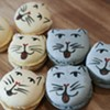 Pounce Cat Cafe: For the love of coffee and kitties