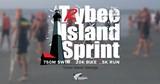d265e900_trybee-blur-photo-with-logo.jpg